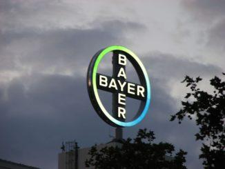bayer, opciones financieras